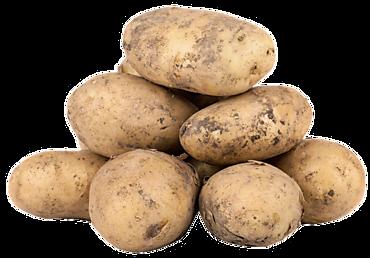 Картофель импорт